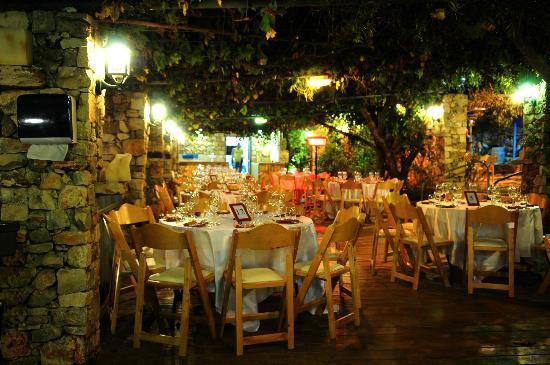Tur Sinai Organic Farm Resort : Dinner area
