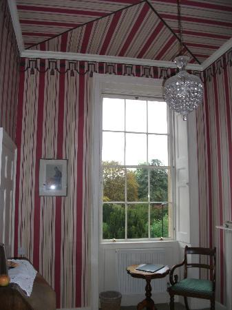 B&B Bathwick Gardens: Photo of Napolean Wall paper