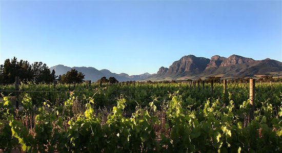 Val de Vie Wines: getlstd_property_photo