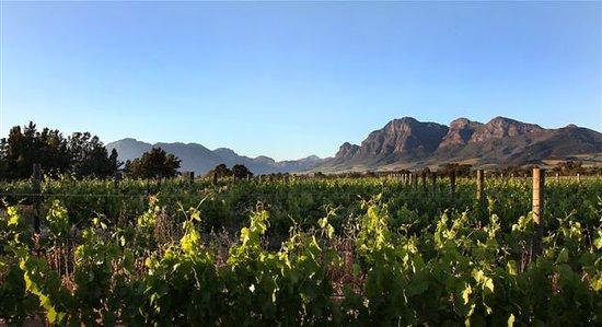 Val de Vie Wines