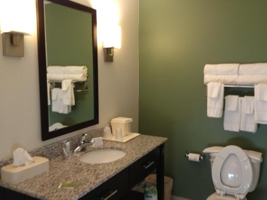 Sleep Inn & Suites Evergreen: bathroom is large