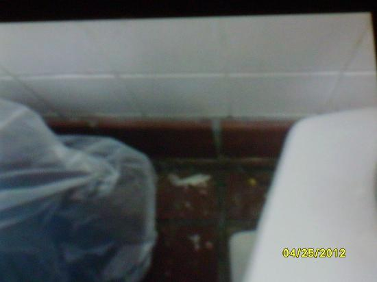 Fire Mountain: Gross floor behind toilet and trash can in stall in womens restroom