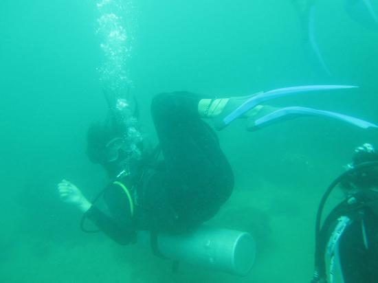 Calipso Dive Center: round round