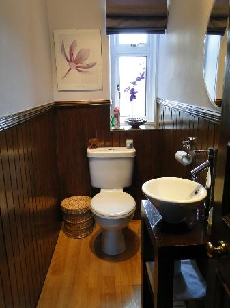 Gleniffer Bed & Breakfast: one of the bathrooms (just toilet and sink)