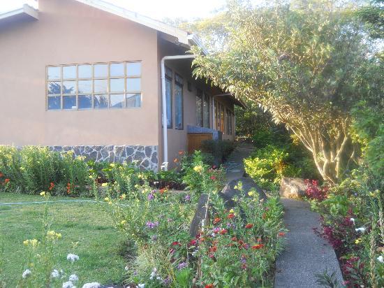 Hotel Las Orquideas: Hotel gardens