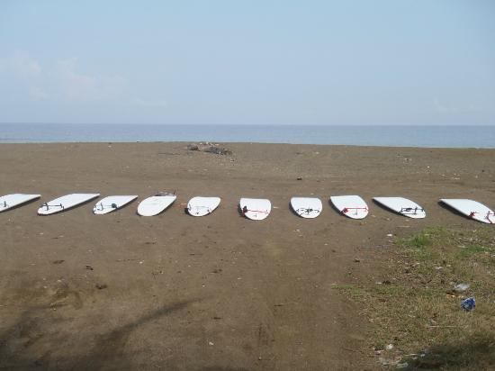 Rica Surf - Day Lessons and Surf Trips: Getting ready...