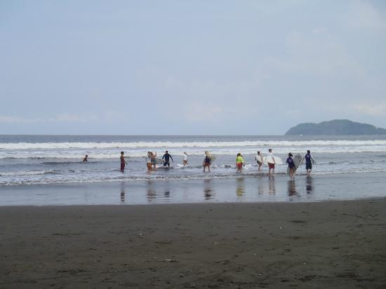 Rica Surf - Day Lessons and Surf Trips: Surfing