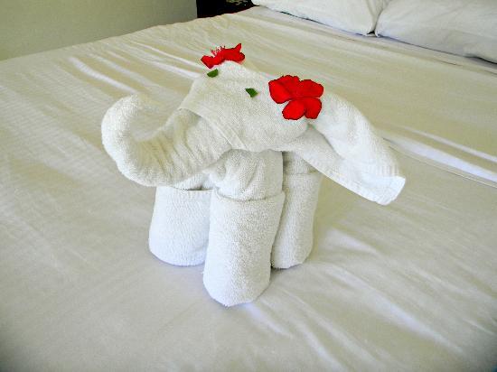 Cabanas Tulum: Housekeeping :)