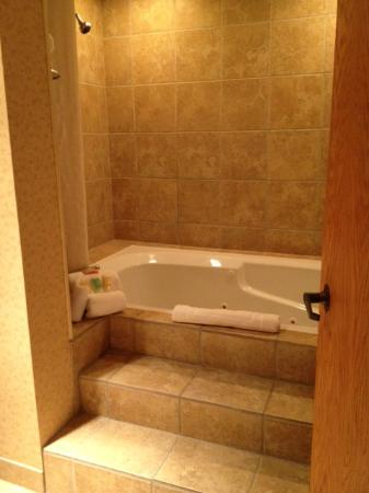 Ogle Haus Inn: Jacuzzi Tub and Shower