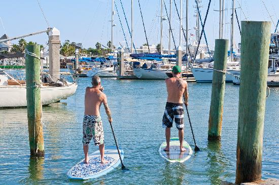 Port Aransas, TX: Paddle Boarding in Port A