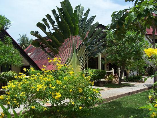 Ban Nam Mao Resort: Ogród