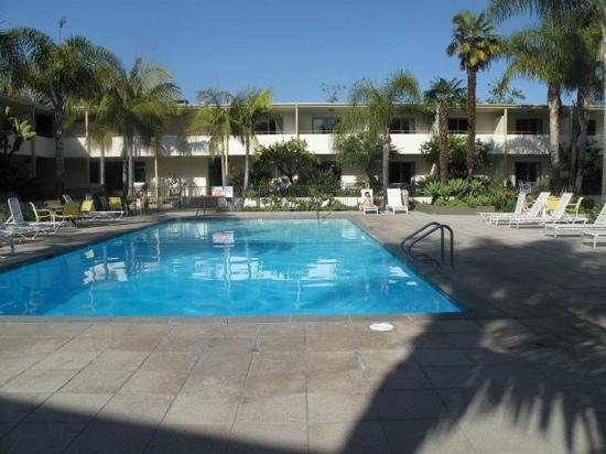 Lemon Tree Inn: poolside and hotel rooms around