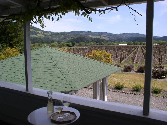 Larkmead Country Inn: this was from our private sitting area looking out over the vineyards (in winter)