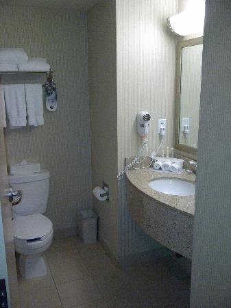 Holiday Inn Express & Suites Surrey: Bathroom sink