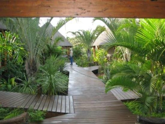 Lodge Afrique : pathway to room