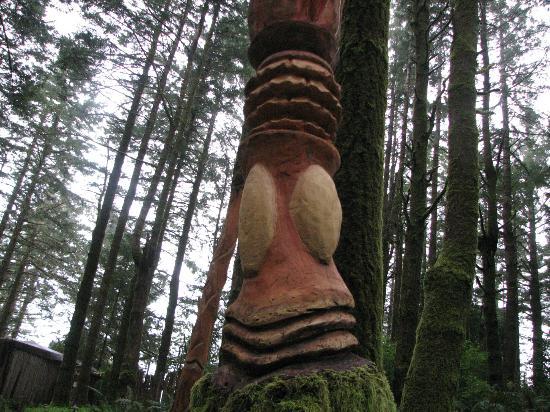 WildSpring Guest Habitat: carvings in trees