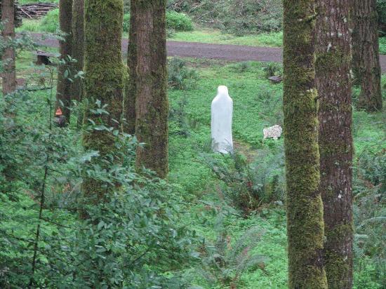WildSpring Guest Habitat: very spiritual