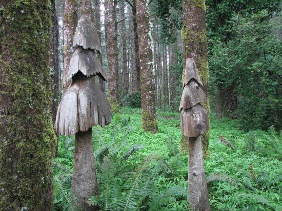 WildSpring Guest Habitat: mushroom trees