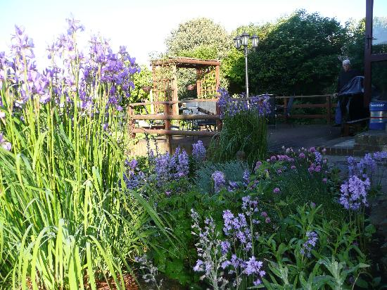 """Dr Syns Guest House: A Sea of Blue, """" Dr syns Garden"""" Spring."""