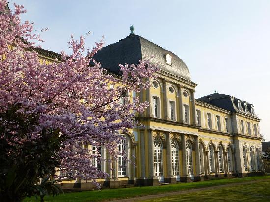 Poppelsdorf Palace: Seitenansicht