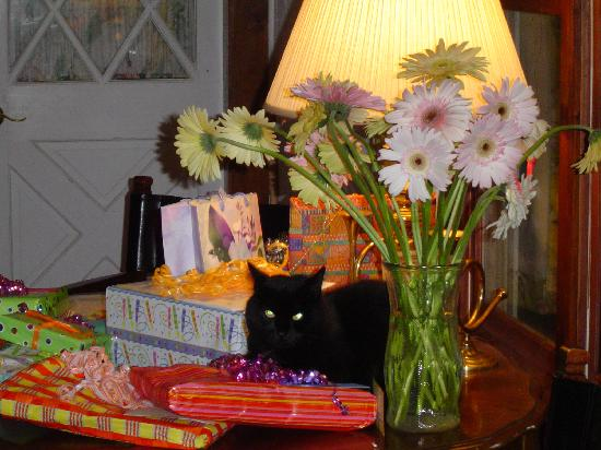 Brookfield Bed and Breakfast : A few birthday presents plus...