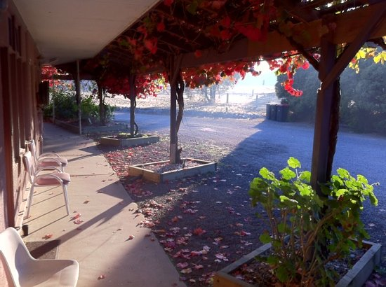 Stawell's London Motor Inn: Early morning