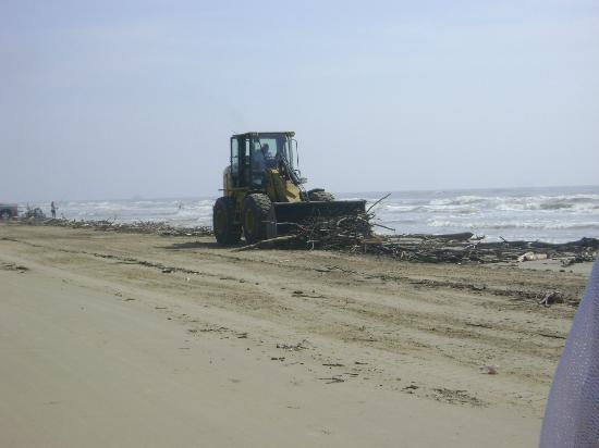 Massive driftwood clean up at Surfside Beach.