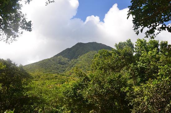 Peak Heaven: Nevis peak