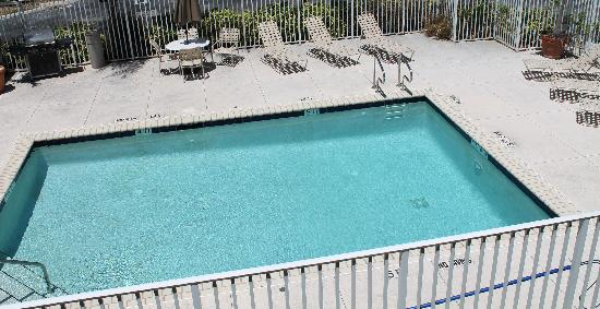 Extended Stay America - West Palm Beach - Northpoint Corporate Park: Pool