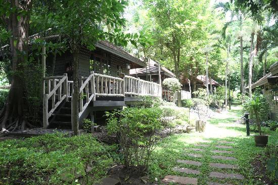 Pasak Hillside Resort: Lakeside Bungalow B