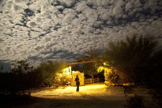 Spin and Margie's Desert Hideaway: Out in front of Spin & Margies under a full moon last August