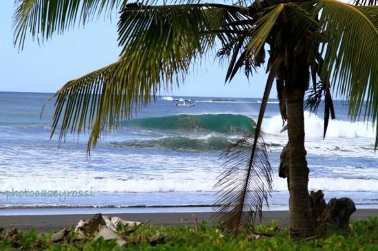 Marbella Surf Inn : best beach break in costa rica