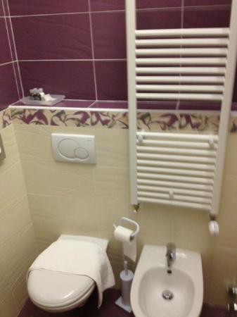 Residenza al Teatro: Bagno in camera (sanitari)