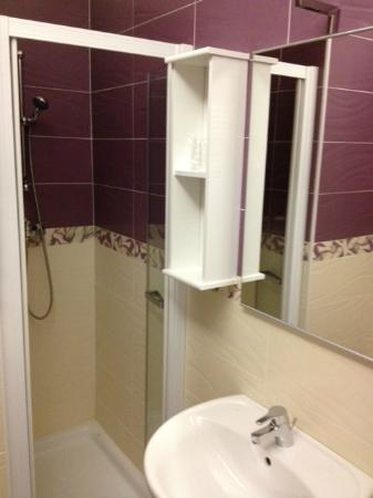 Residenza al Teatro: Bagno in camera (doccia e lavabo)