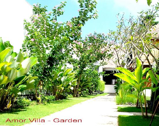 Amor Bali Villa: Out door garden