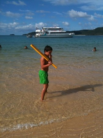 Fantasea Adventure Cruising Reefworld : cricket with the fantasea boat in the background