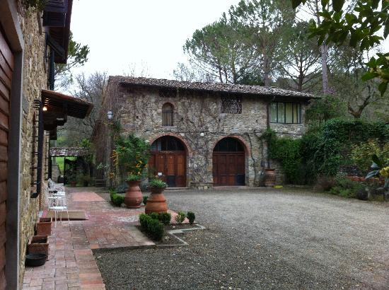 Agriturismo Casanova - La Ripintura: Winery at Casa