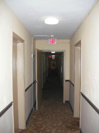 AAE Miami Beach Lombardy Hotel: Corridoio