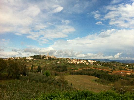 Podere Sant'Elena: View from B&B