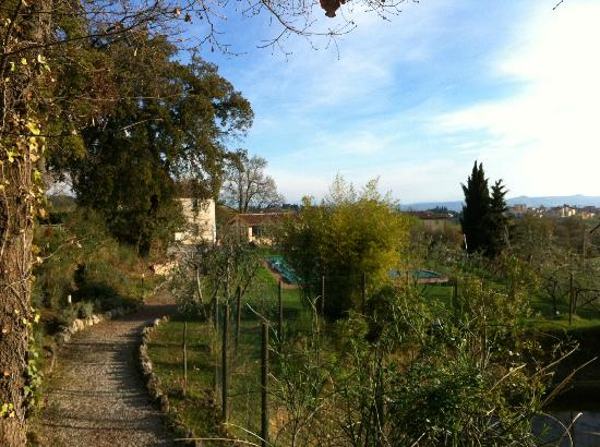 Podere Sant'Elena: View on B&B while walking around