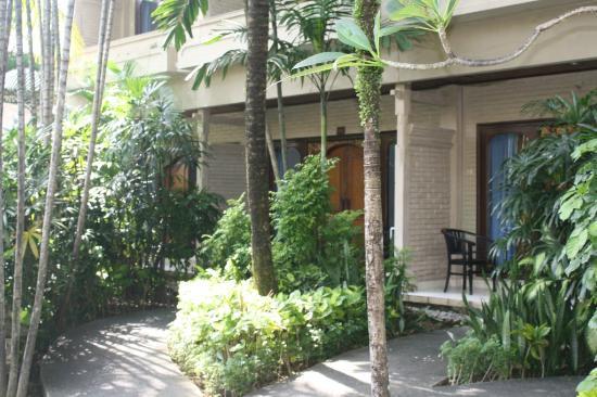 Aneka Beach Hotel: plants & trees outside standard rooms