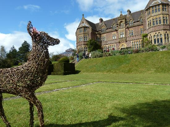 Tiverton, UK: wicker deer