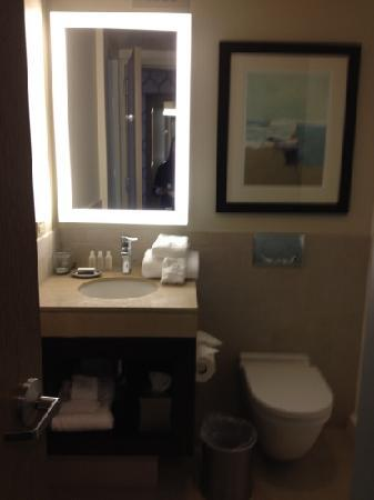 Hotel Indigo Long Island - East End: bathroom