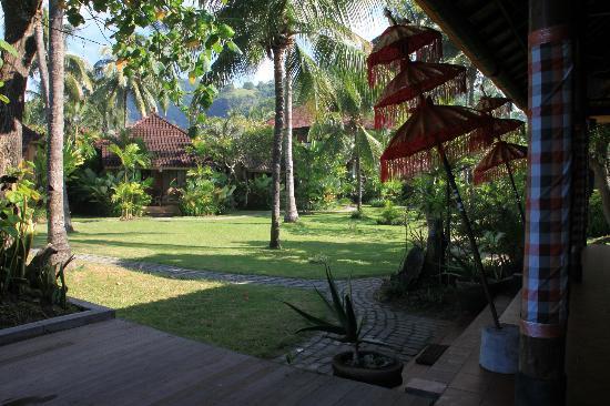دي تونجونج ريزورت آند سبا: Jardín desde el área de restaurante