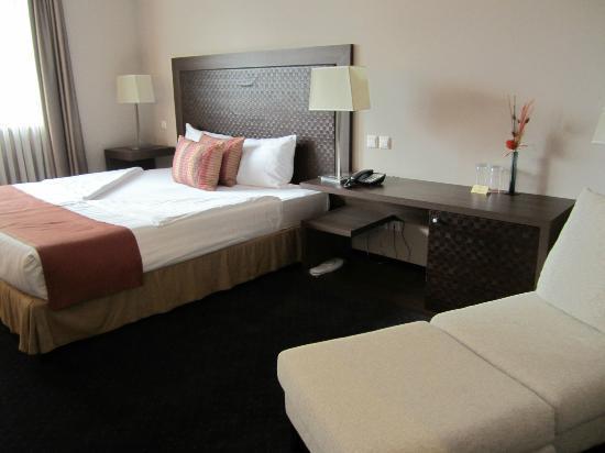 Metropolitan Hotel Sofia: Standard Room