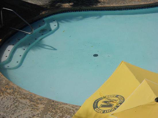 Rincon of the Seas Grand Caribbean Hotel: Agua sucia y con cosas flotando