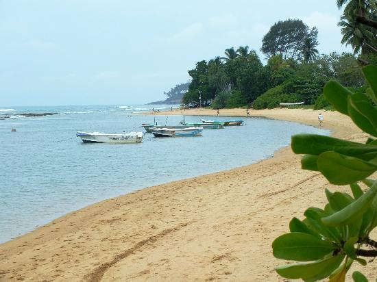 Barberyn Reef Ayurveda Resort: beach