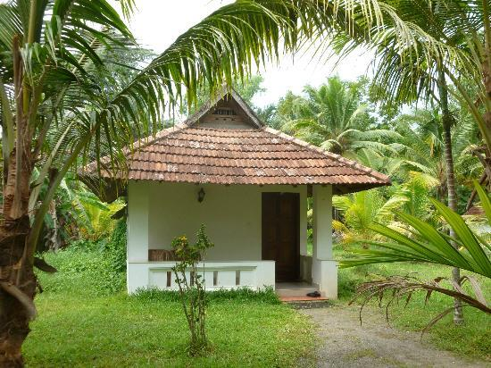 Palmgrove Lake Resort: Bungalow