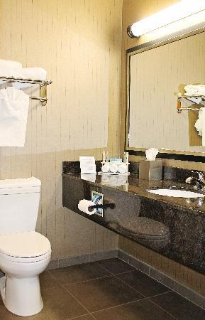 Holiday Inn Express Hotel & Suites Grand Junction: Guestroom bathroom