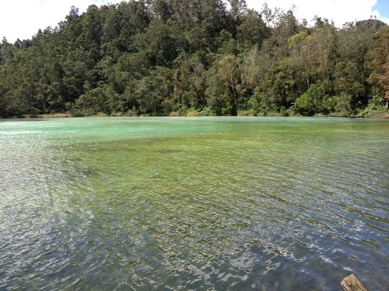 Dieng, Ινδονησία: Telaga Warna (coloured lake)